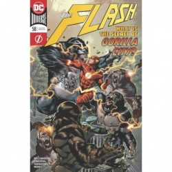 FLASH -58