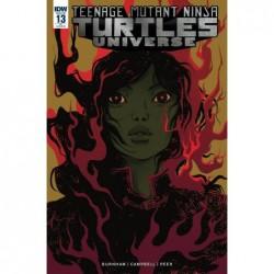 TMNT UNIVERSE -13 10 COPY INCV