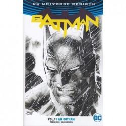 BATMAN TP VOL 1: I AM...