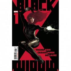 BLACK WIDOW -1
