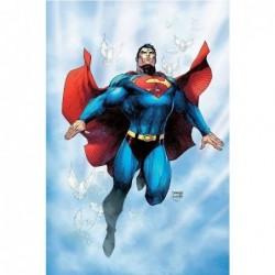 SUPERMAN POUR DEMAIN - TOME 0