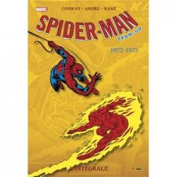 SPIDER-MAN TEAM-UP:...
