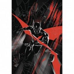 BATMAN BEYOND -1 VAR ED