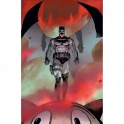 BATMAN CATWOMAN -8 (OF 12)...